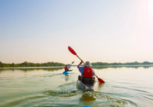 2 Hour Guided Kayaking Tour