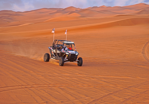A Real Family Day Out Buggy Tour
