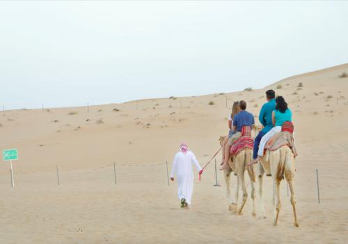 Camel Ride Tour   Ras Al Khaimah