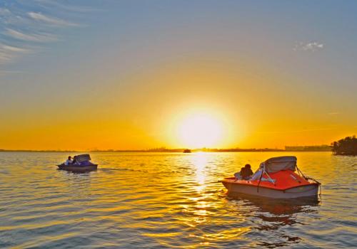 Mangrove Cruise Trip