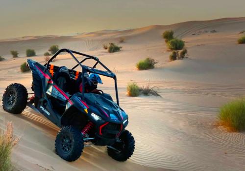 Polaris-RZR (1000cc) Desert Tour
