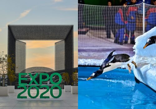 Expo 2020 with Ski Dubai Daycation Packages