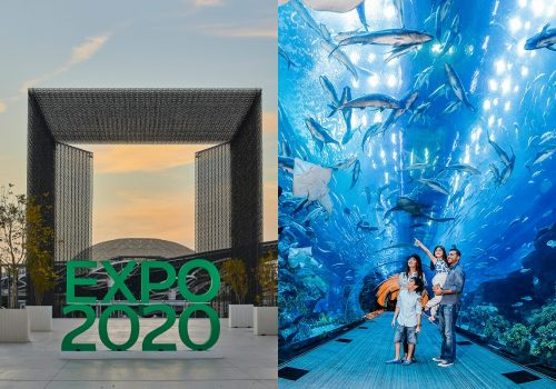 Expo Multi Day Pass with 4 Attractions